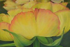 Öl- + Acryl Lotti Haerdi Rose