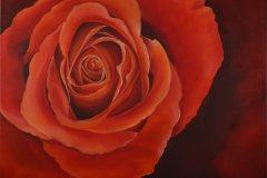 Öl- + Acryl Lotti Haerdi Rose rot