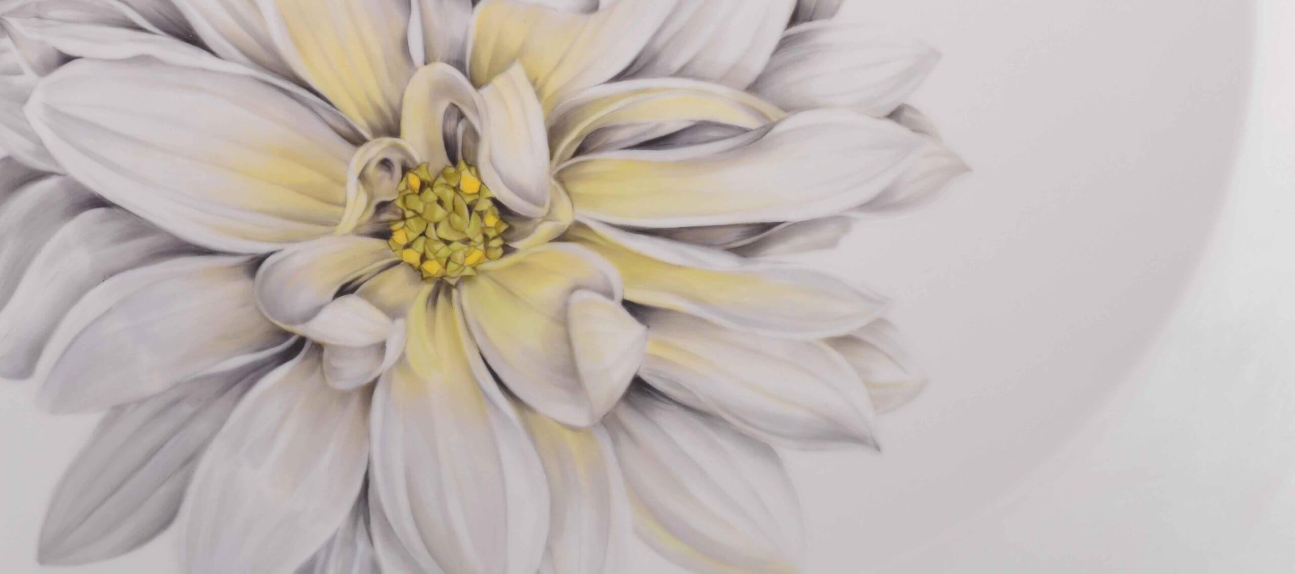 Lotti Haerdi - Atelier für handbemaltes Porzellen